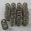 Comp Cams Single Valve Spring